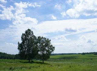 Московская область передала Дубне землю для многодетных семей